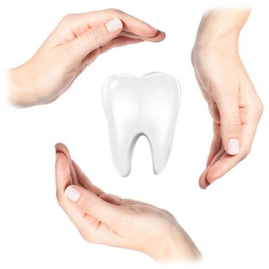 protége dent dentalam france